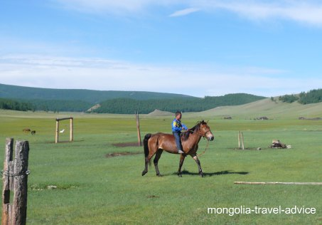 Mongolia horse travel