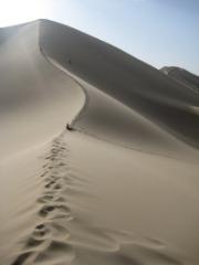 picture gobi desert sand dune