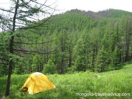 Picture Terelj national park