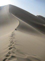 gobi desert thumb