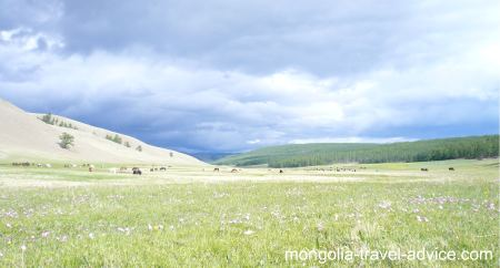 mongolia images: valley near Lake Khovsgol