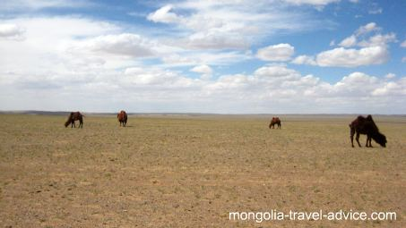 Mongolia topography Gobi Desert