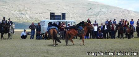 buzkashi west  mongolia