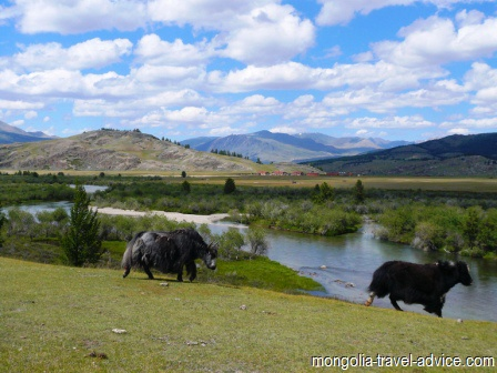 river good fishing west mongolia